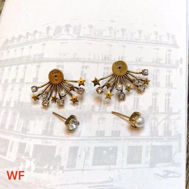 Dior Earrings CE3496